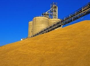 Импортеры нашей сельхозпродукции