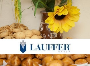 Lauffer Group: итоги 2014 года