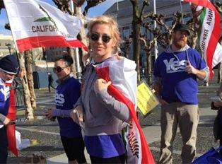 Калифорния: сбор голосов разрешен