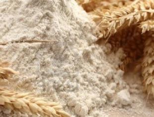 Хлебные войны в Южной пальмире