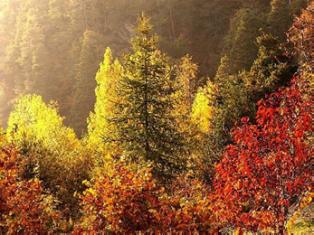 Очарование осени в Альпах